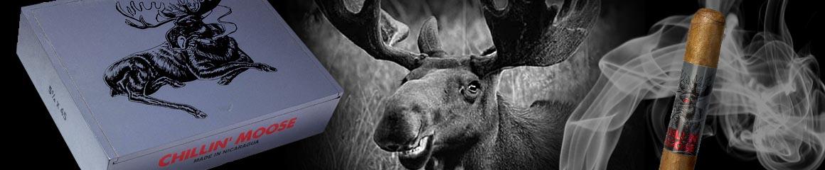 Foundry Chillin' Moose