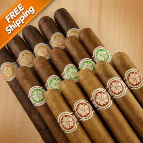MYM Room 101 Ichiban Sampler-www.cigarplace.biz-22